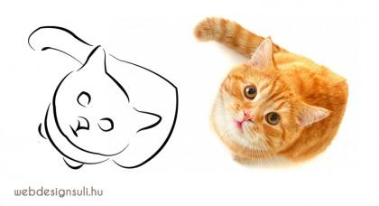 macska-alakzat-rajz